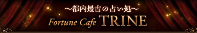 〜都内最古の占い処〜 Fortune Cafe TRINE