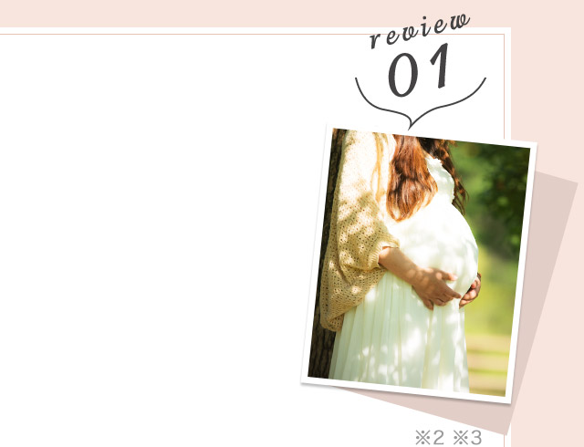 review01 ※2 ※3